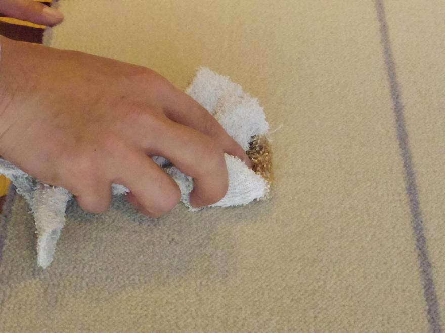 WOOLTILEにこぼしたしょう油を乾いた布で拭き取る