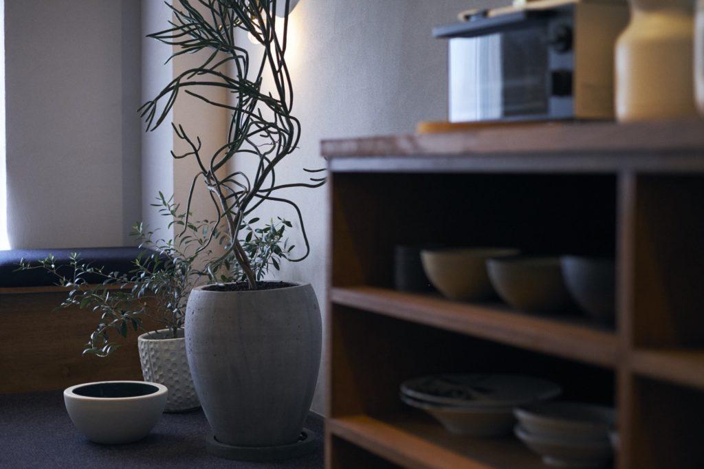 室内の棚やグリーン