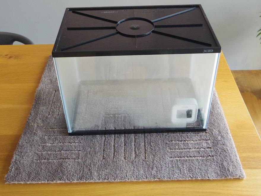 湿度80%の状態で水槽のしたにポリエステルのカーペットを敷く