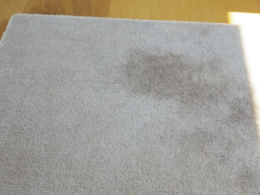 水分をあるていど取り除いたカーペット