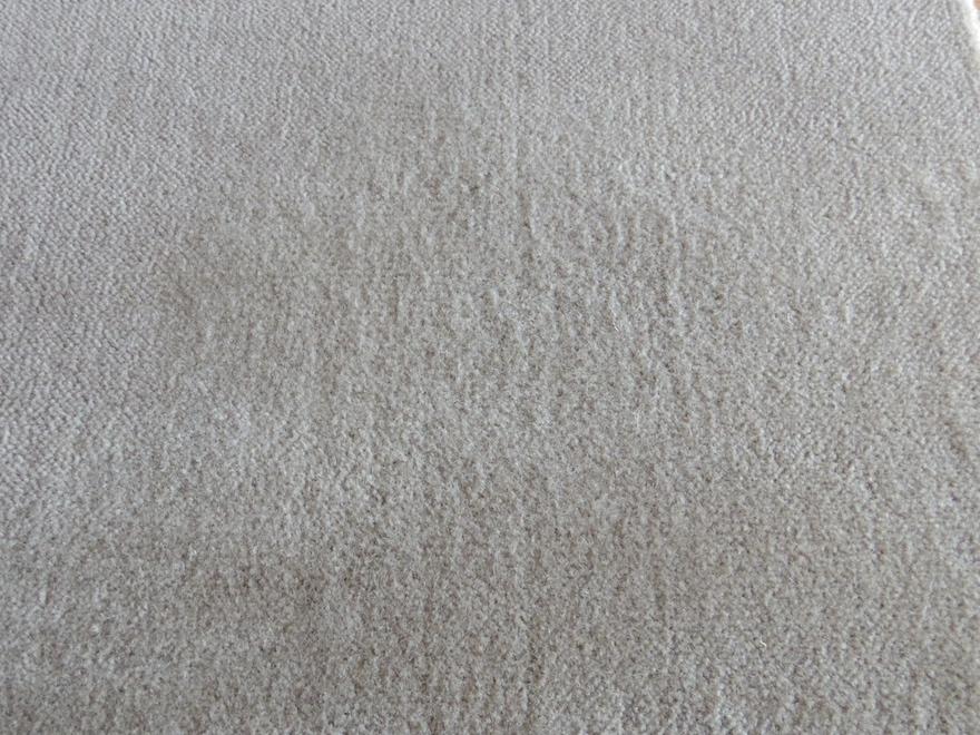 洗濯したものはカーペットの表面が毛羽立っている