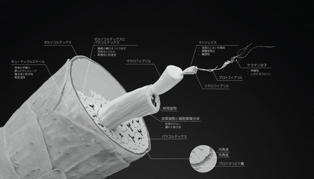 ウールの繊維構造 出典:ザ・ウールマーク・カンパニー